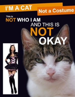 Photo via Pinterest.Com (Also a Joke, Don't Flip Out.)