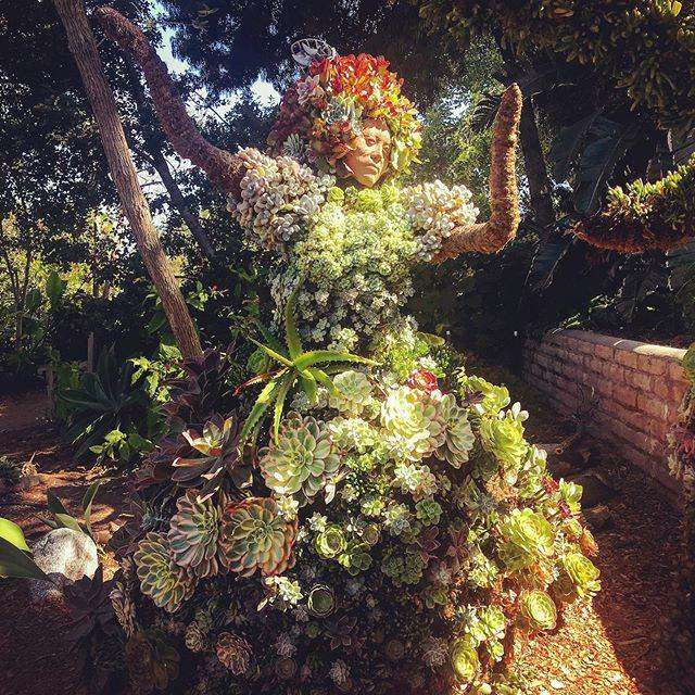 A succulent wild woman. 🌵 ⭐️