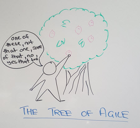 Cherry-picking from Agile