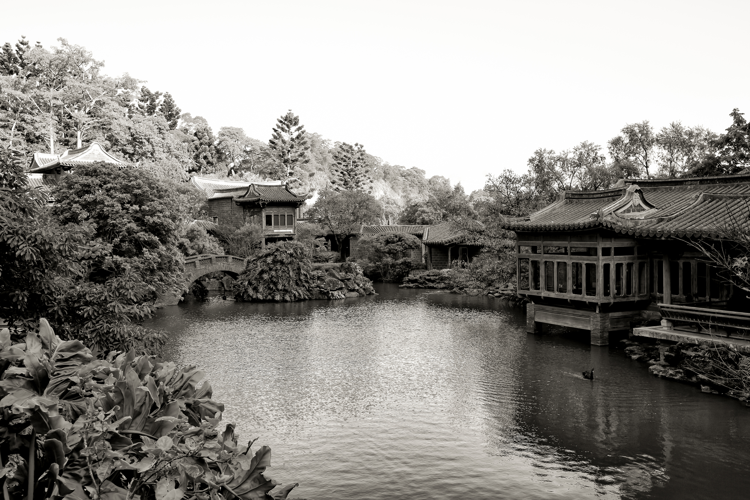 A Chinese Garden in the mountains of Hsinchu county (新竹縣山上的花園)