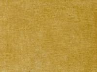 Tartiana Maize 7755-27