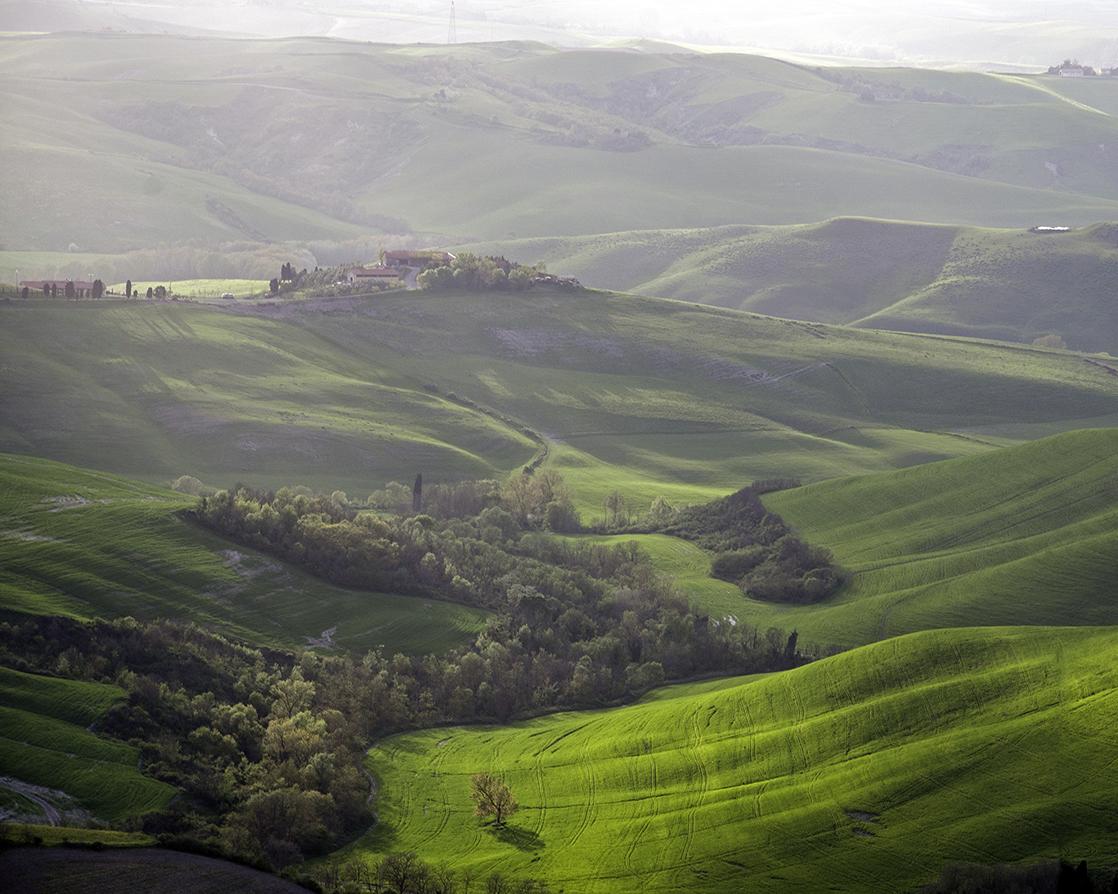 colline di morbido velluto.jpg