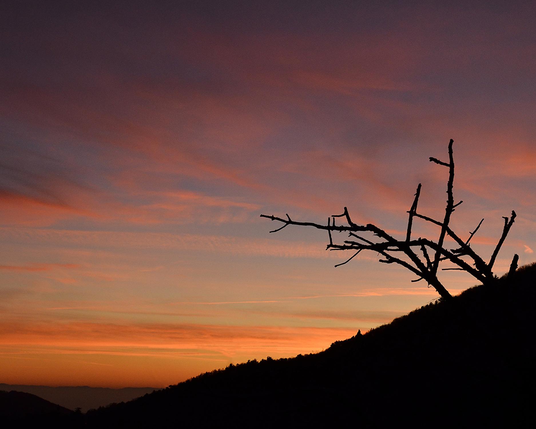 _DSC8894 - tramonto dai Lessini.jpg