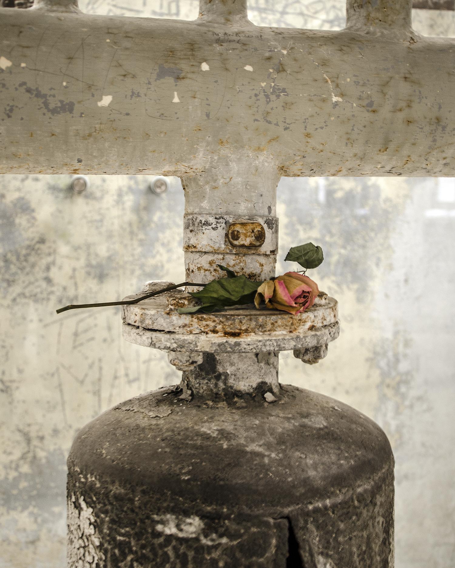 ricordo nel campo di concentramento Mauthausen-7942.jpg
