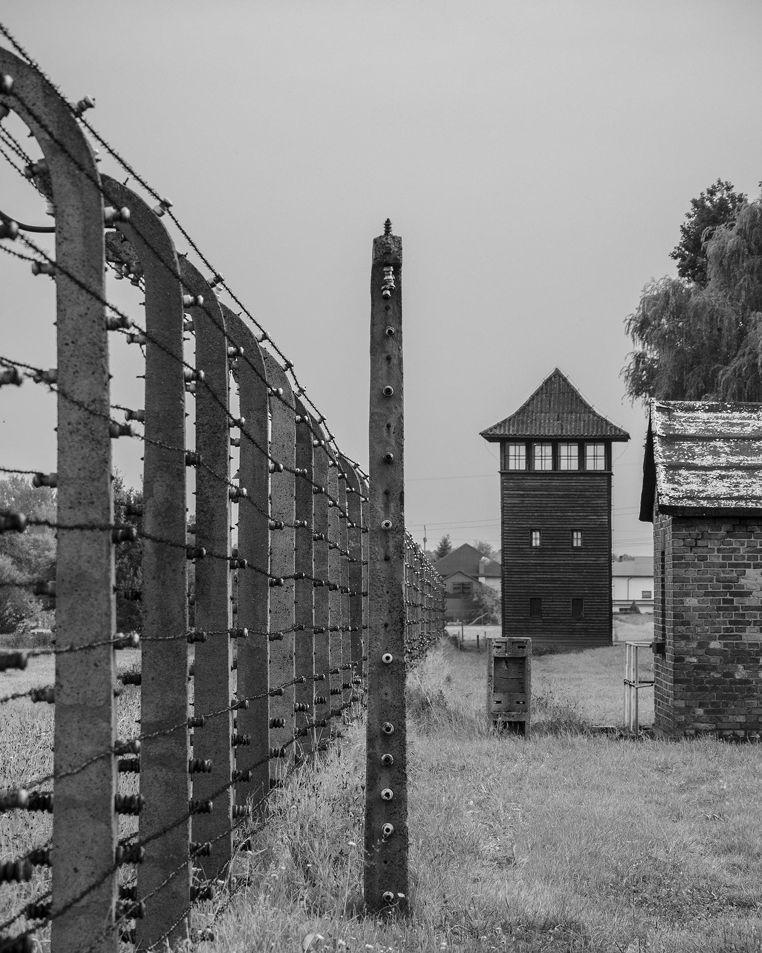 Auschwitz Birkenau-recinto e torretta di guardia-3203.jpg