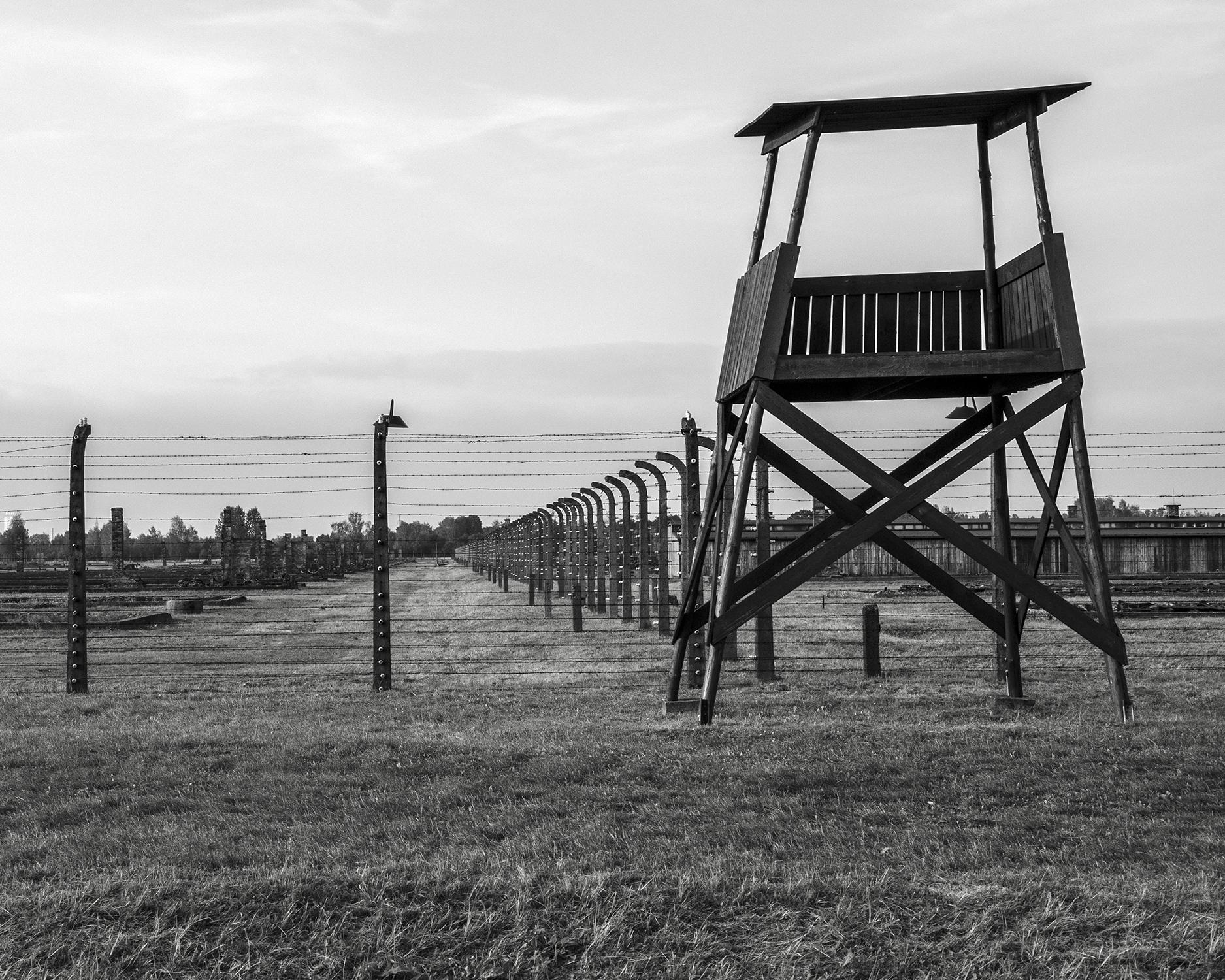 Auschwitz Birkenau-reticolati e torretta-3178.jpg