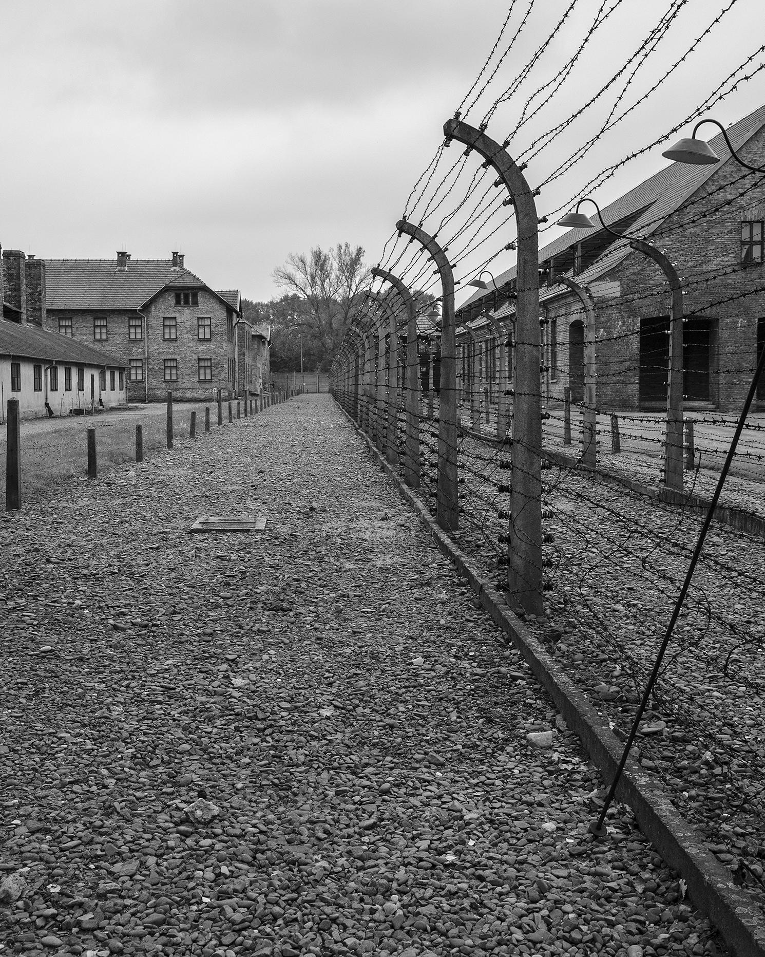 Auschwitz I-reticolati-3018.jpg