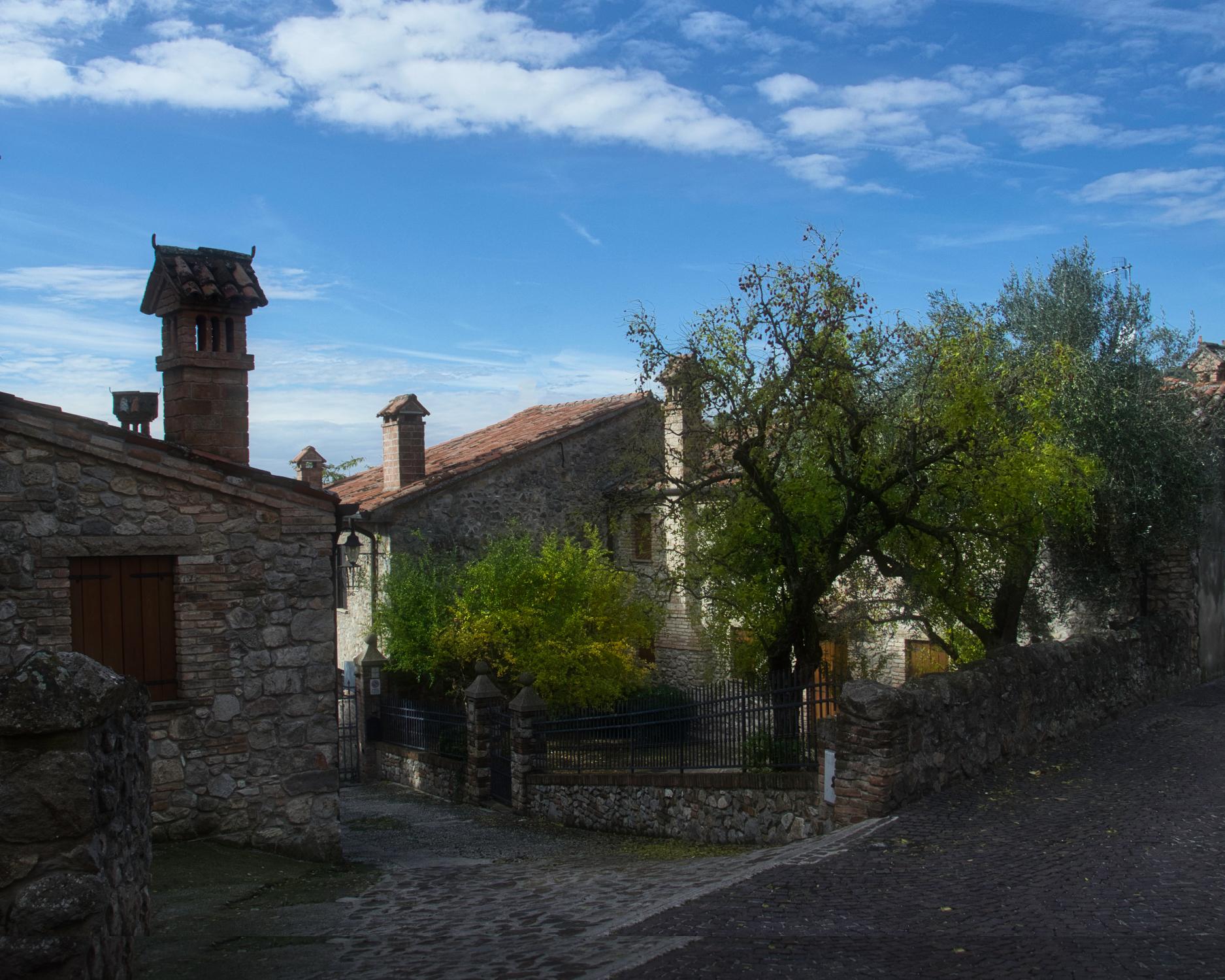 Arquà Petrarca_9389.jpeg
