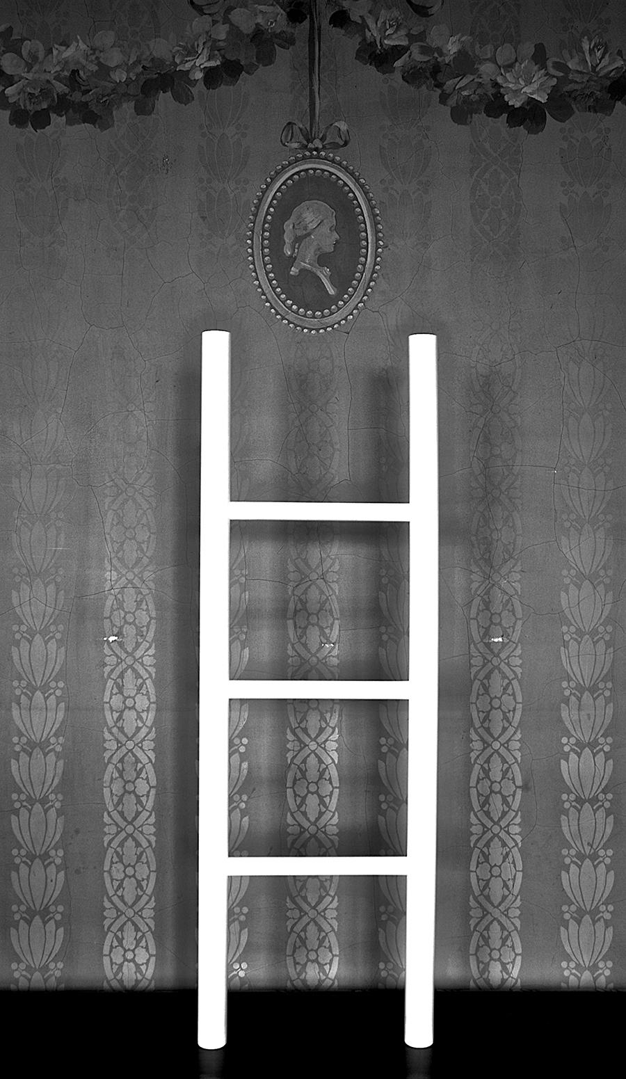 Studio Image: (Free-Standing Ladder)