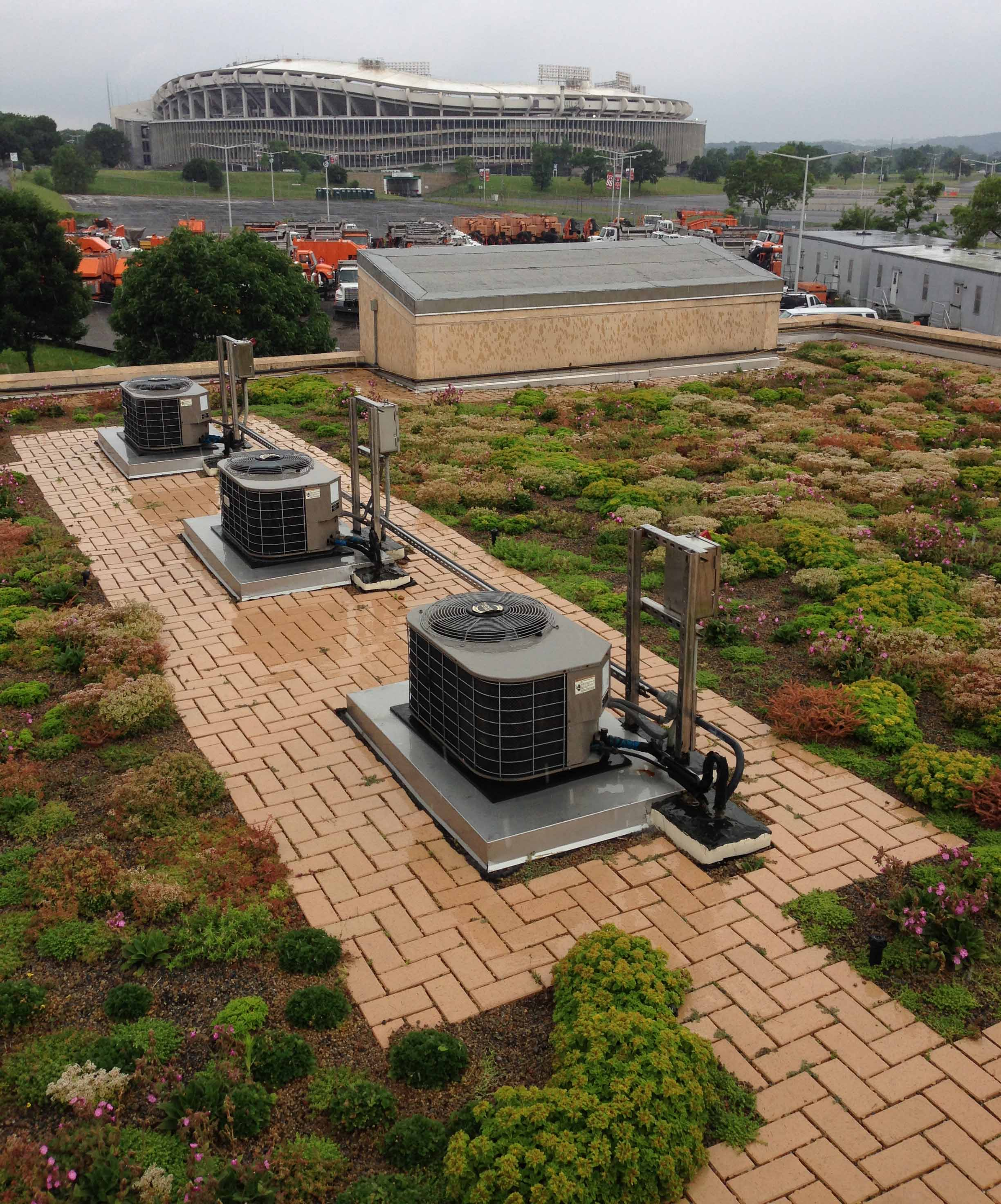 green roof at East Side Pumping Station.