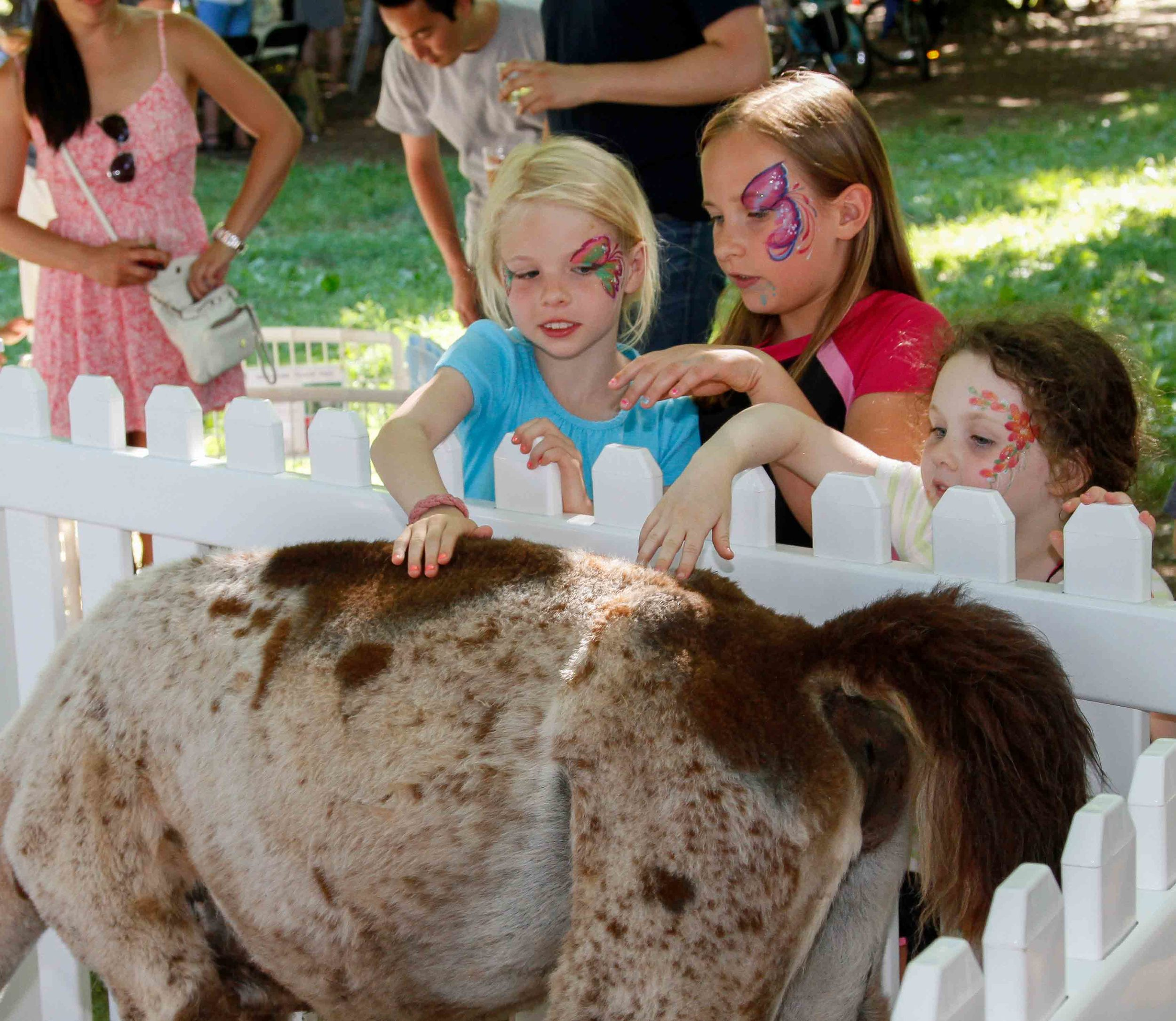 2016-Picnic-PettingZoo_5525-small.jpg