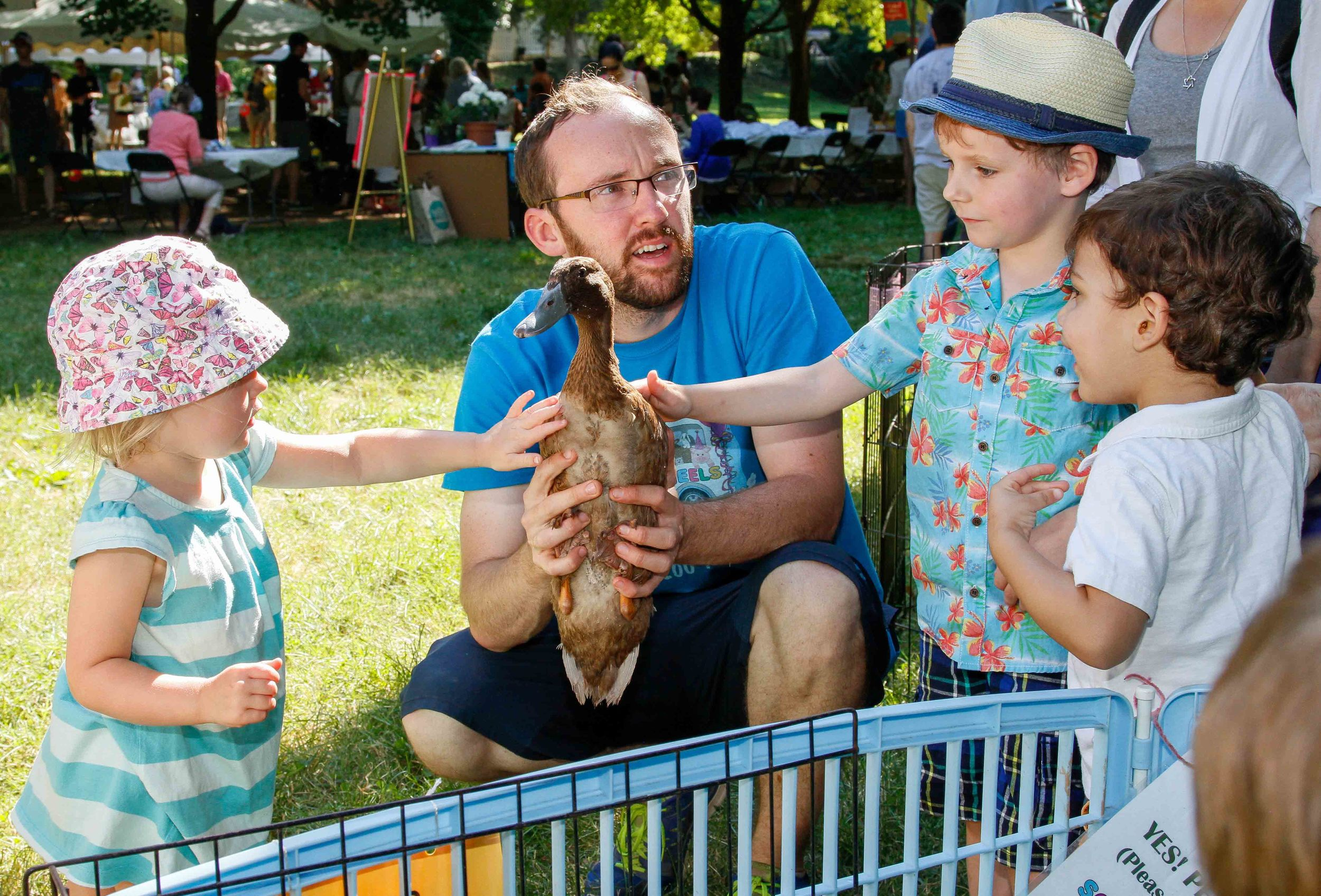 2016-Picnic-PettingZoo_5543-small.jpg