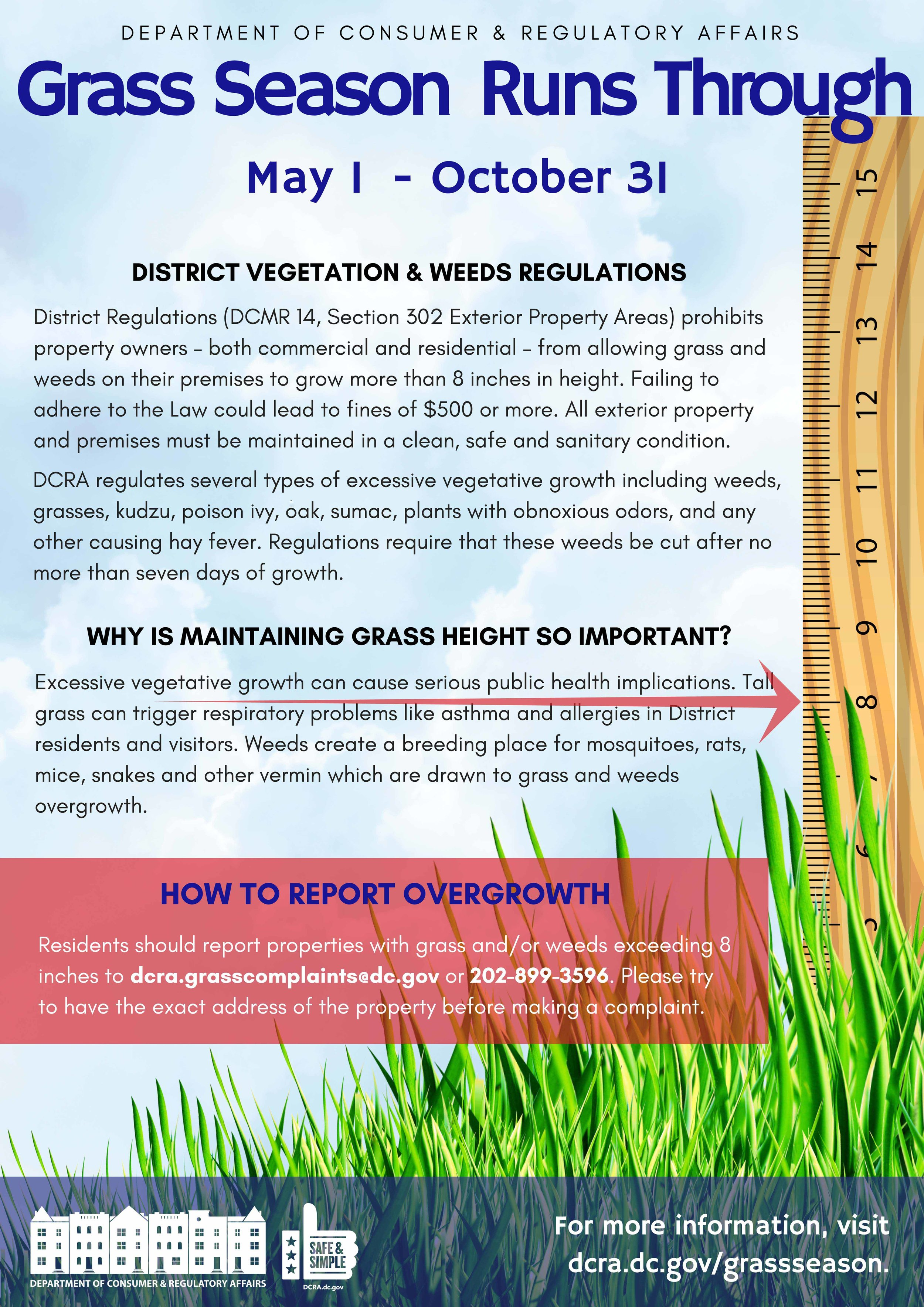 For more information on grass and weed regulations, which also apply to tree boxes, visit the  DCRA's webpage.