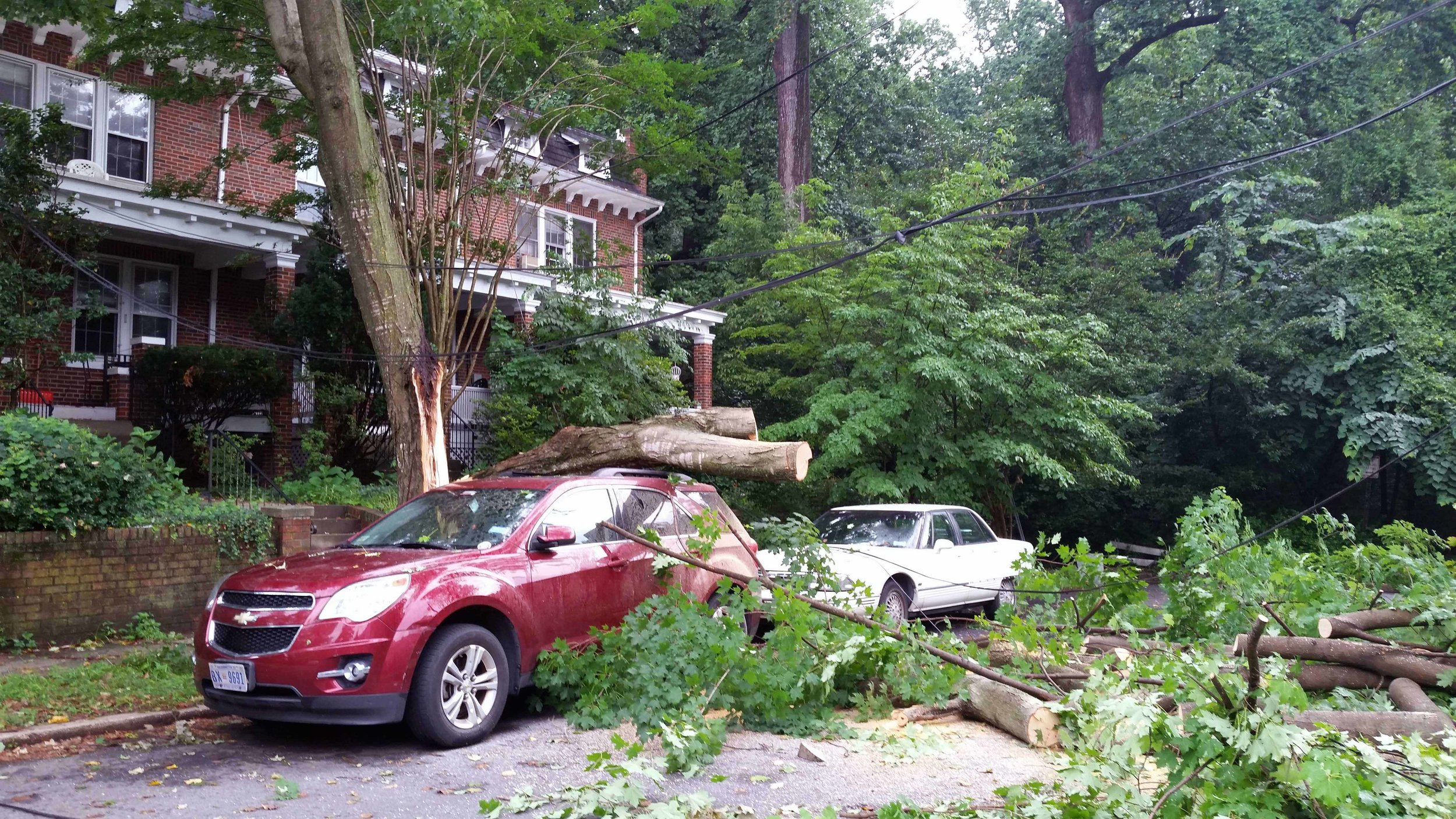 That same night, 38th Street residents lost power due to another fallen tree. Pepco restored the power later that evening.