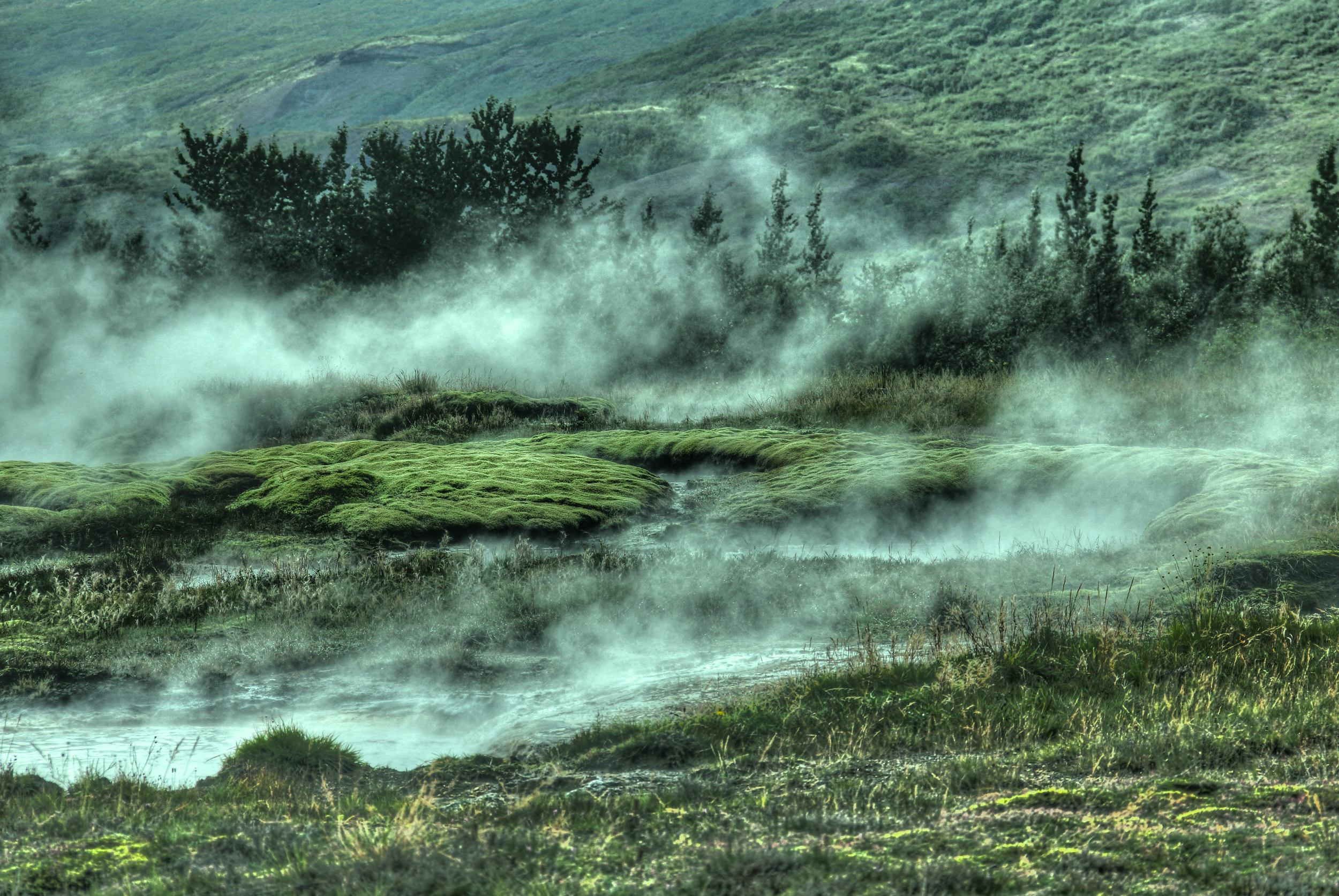 Thermal activity near Selfoss, Iceland. Photo by  Gian-Reto Tarnutzer