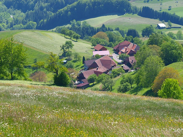 Village view from the meadow. Photo by  mbc-2016 .