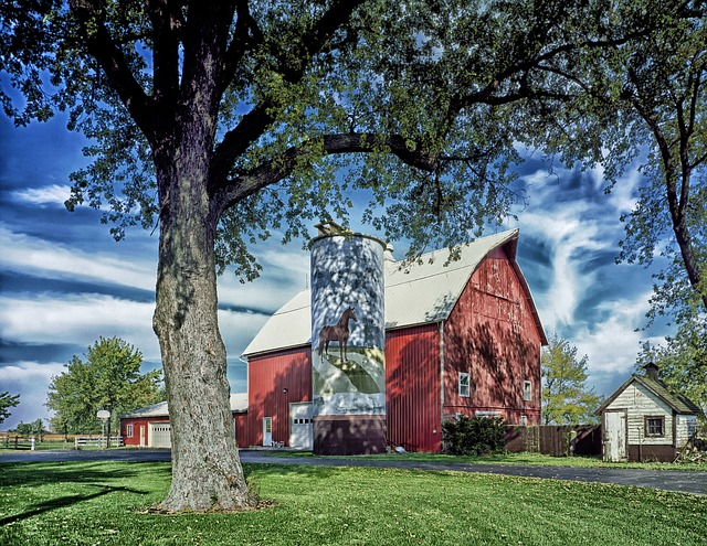 Barnhouse and silo in rural Illinois. Pic by  12019 .