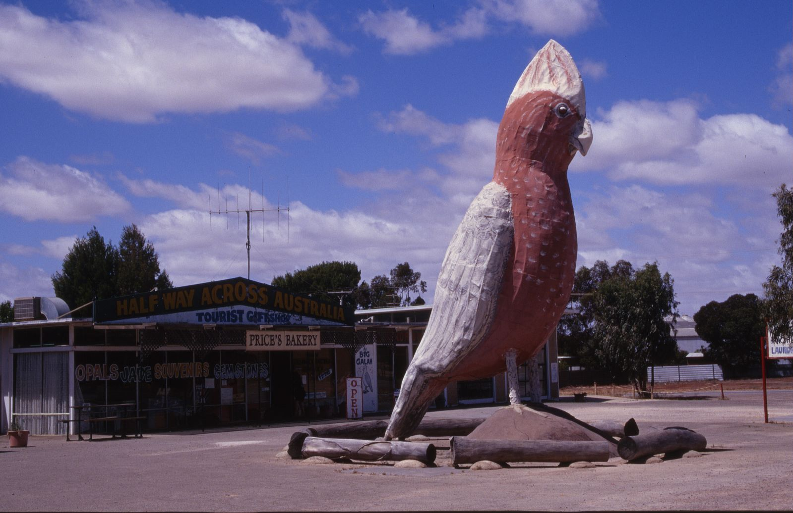 The Big Galah at Kimba, South Australia. Photo by  Adam Eales .
