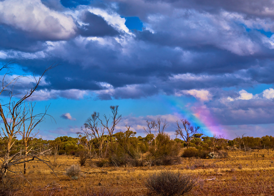 Rainbow near Tjuntjuntjara, Western Australia. Photo ©Claudia Jocher 2019