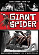 spider_dvd_sm.png