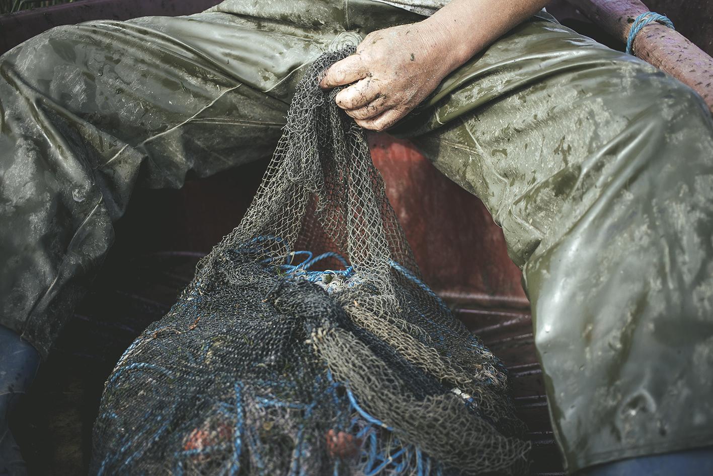 Empty nets, Sulina, Romania, 2015