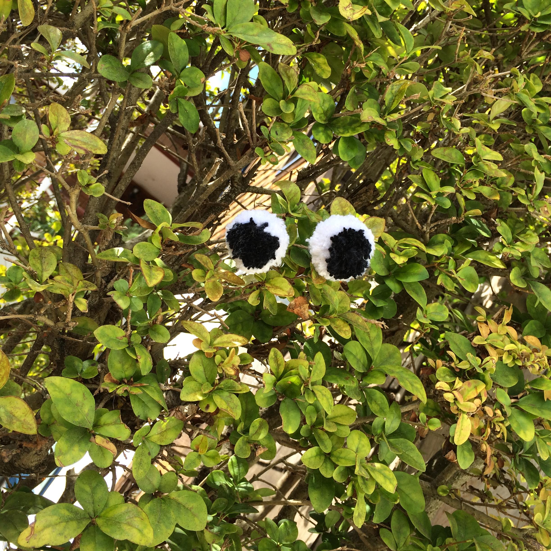 Googly Eyes Pom-Poms