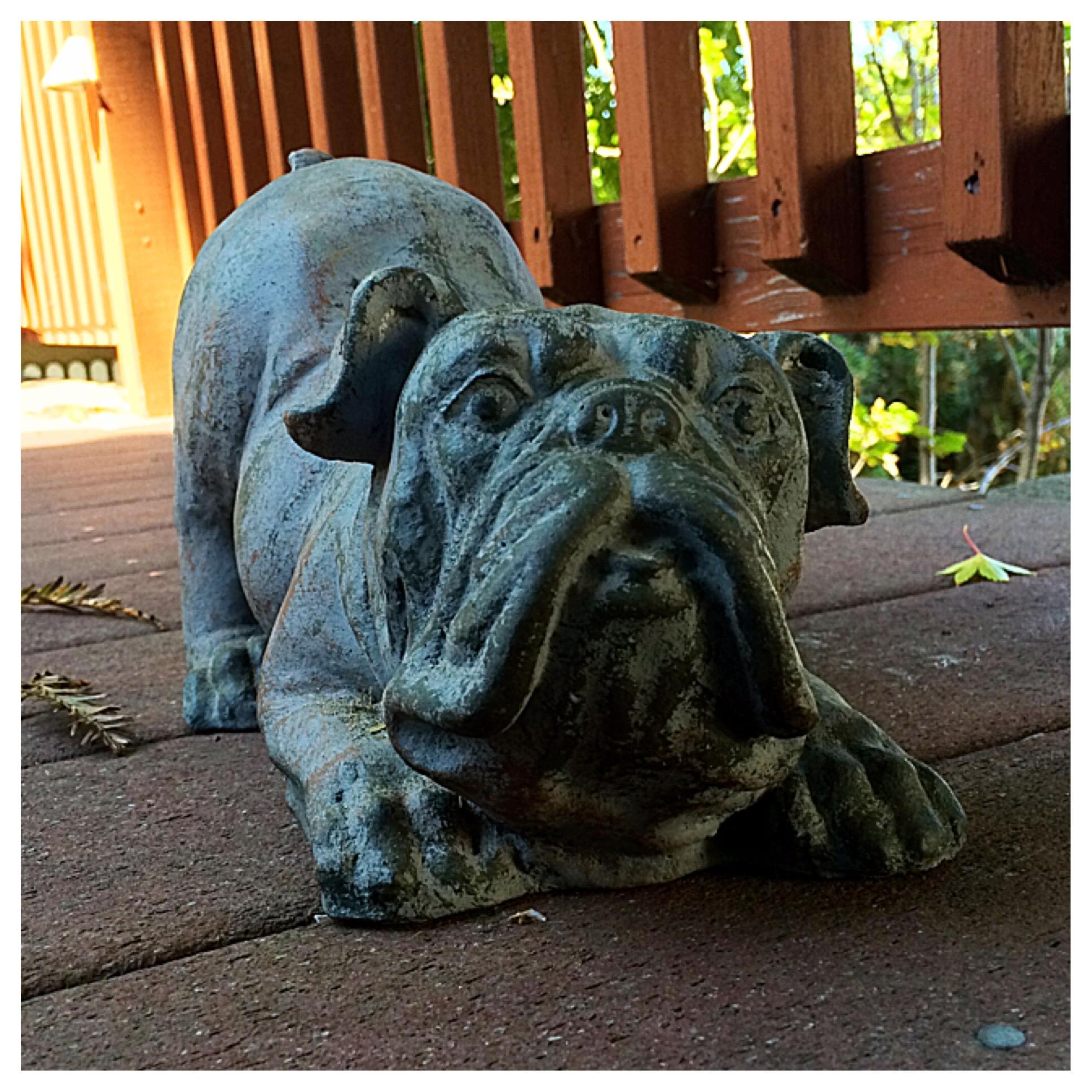 Cookie's backyard statue