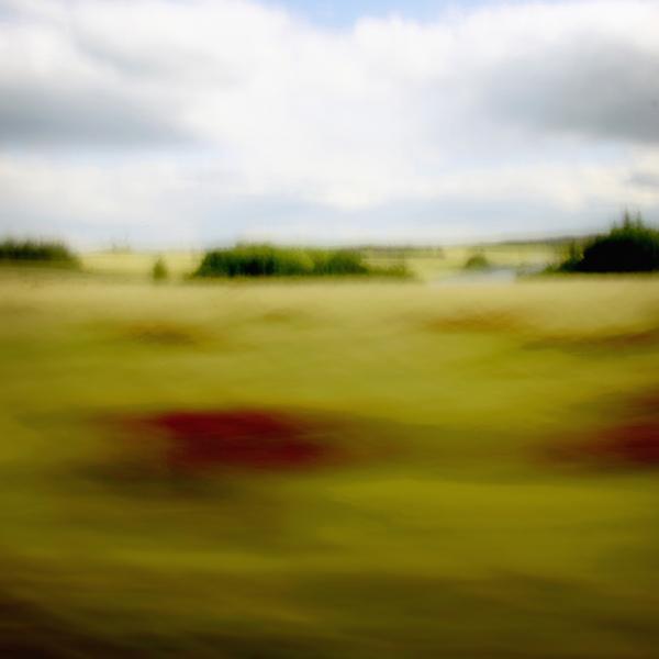 landscape 018.jpg