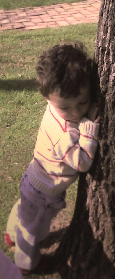 Mateo sostiene el árbol