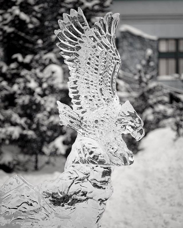 Escultura de hielo. . . . . . #ice #snow #winter #icesculpture #beavercreek #cold #blackandwhite #monochromatic
