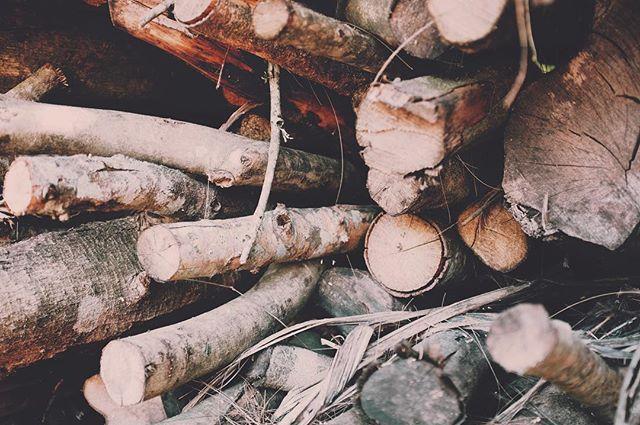 Leña. . . . . #nature #wood #logs #kindling
