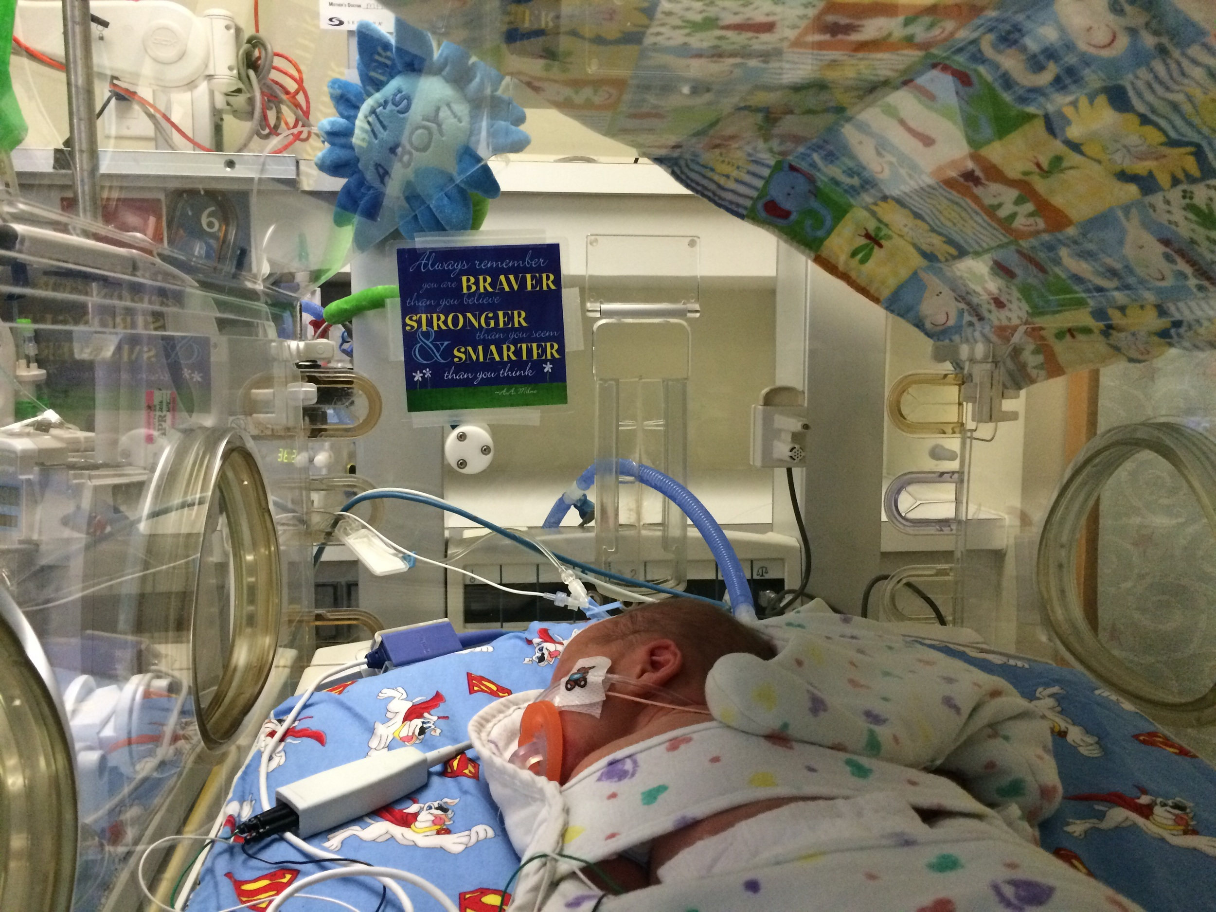Preemie Baby Boy in incubator with NICU crib cards