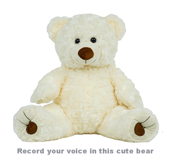 recordable teddy bear makes great valentines gift for preemie and nicu baby