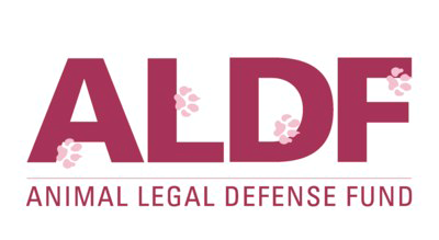 Animal Legal Defense Fund Branding Exercise Example
