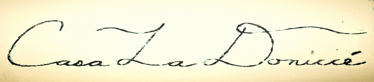 Casa La Donicce Styles Akira Logo.jpg