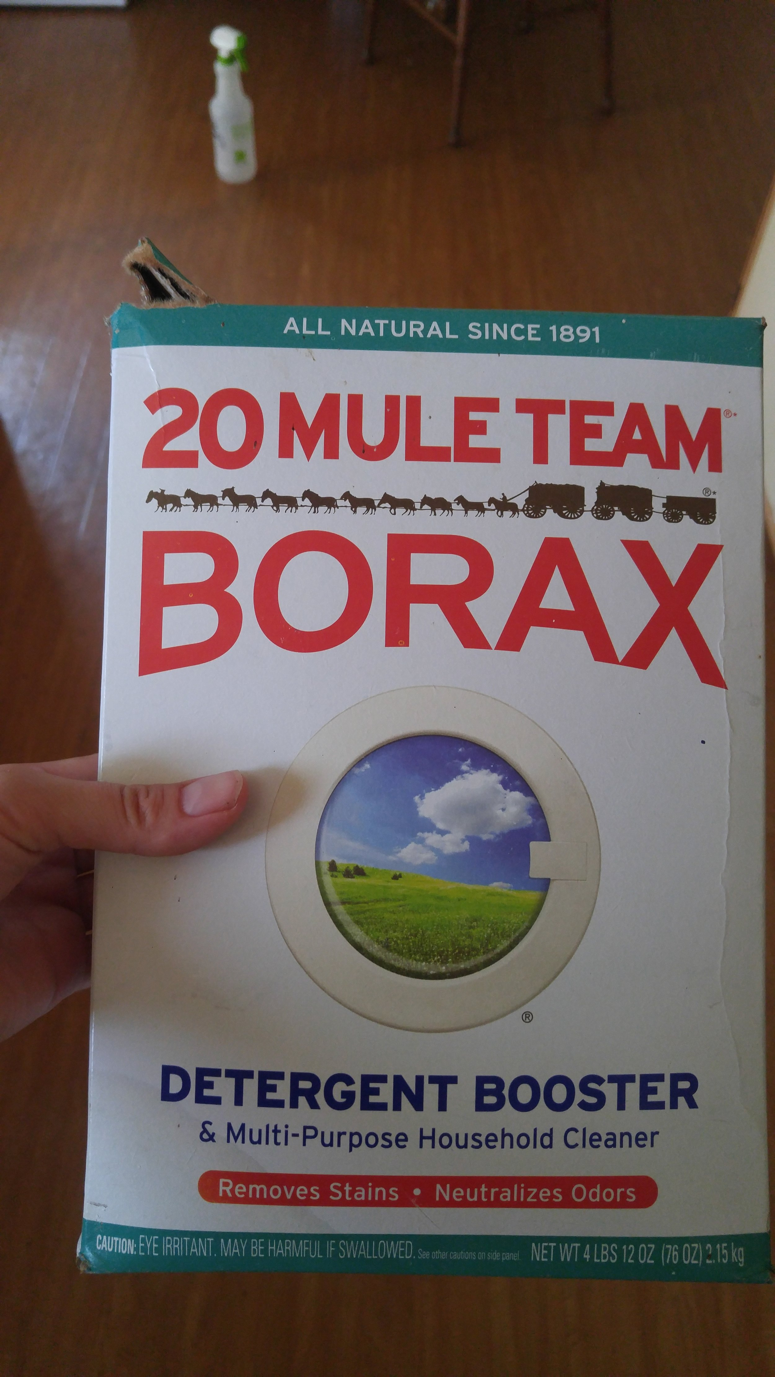Borax is laundry detergent and can be purchased at most larger stores. If there is too1 much borax mixed into the bait, ants will avoid it.