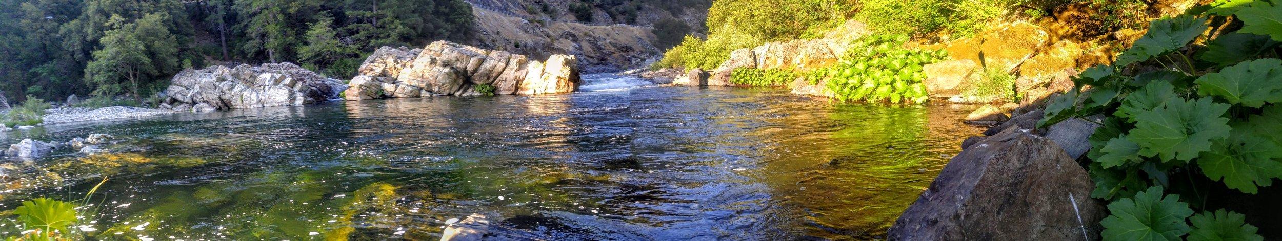 Sierra Gartersnake habitat.