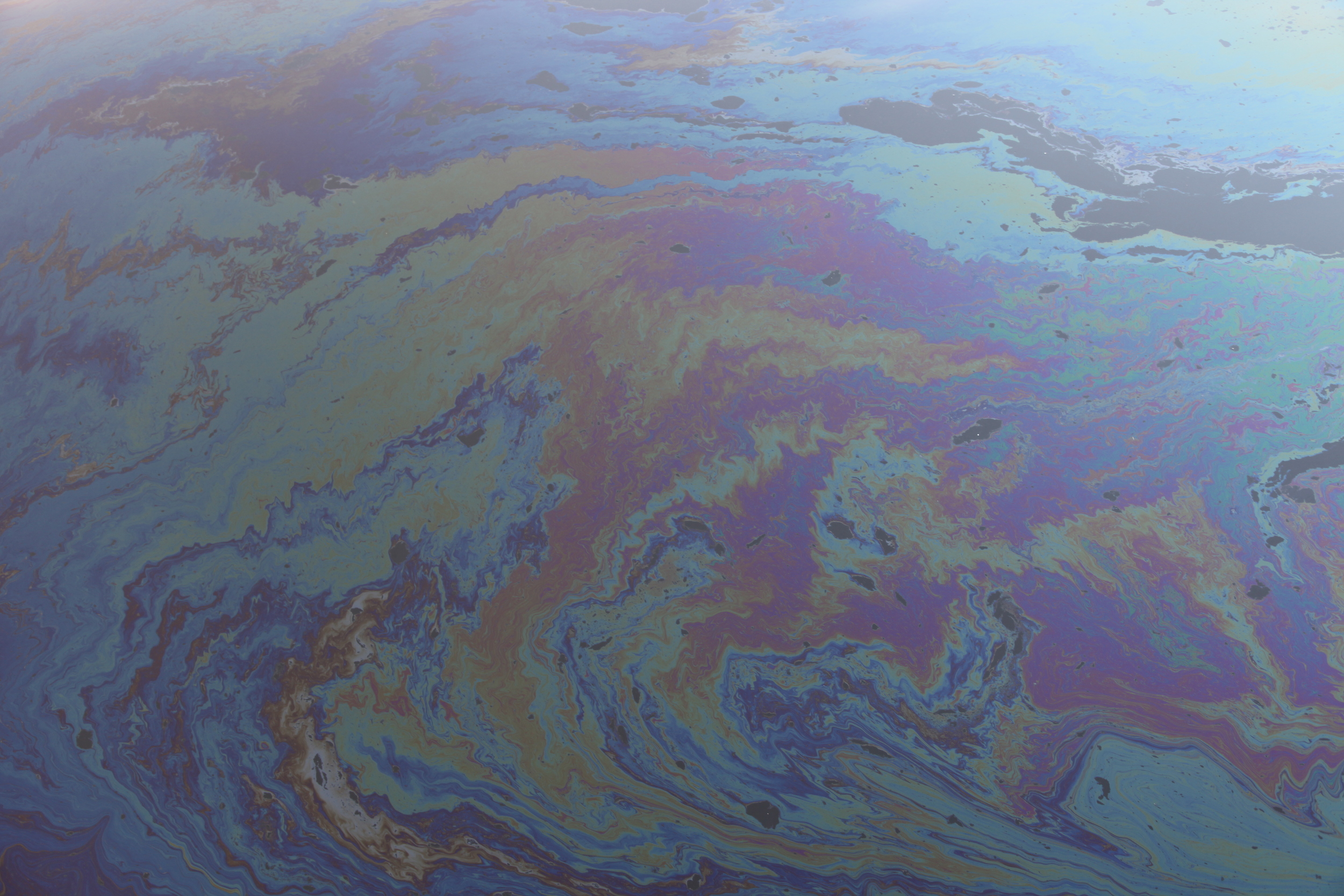 Rainbow Sheen From Spilled Oil on Surface of Newtown Creek, December 2015.