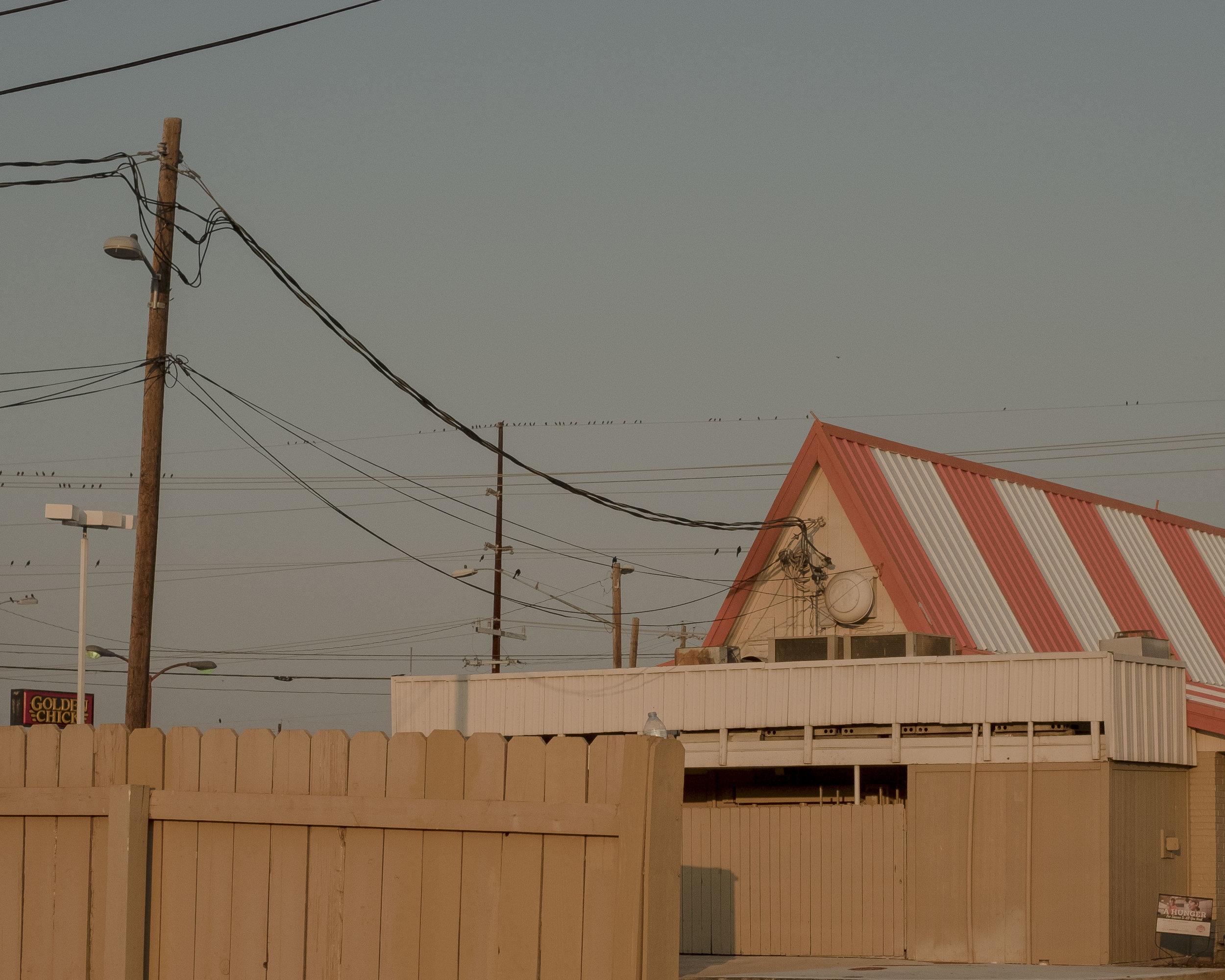 Texas_SB4_08.JPG