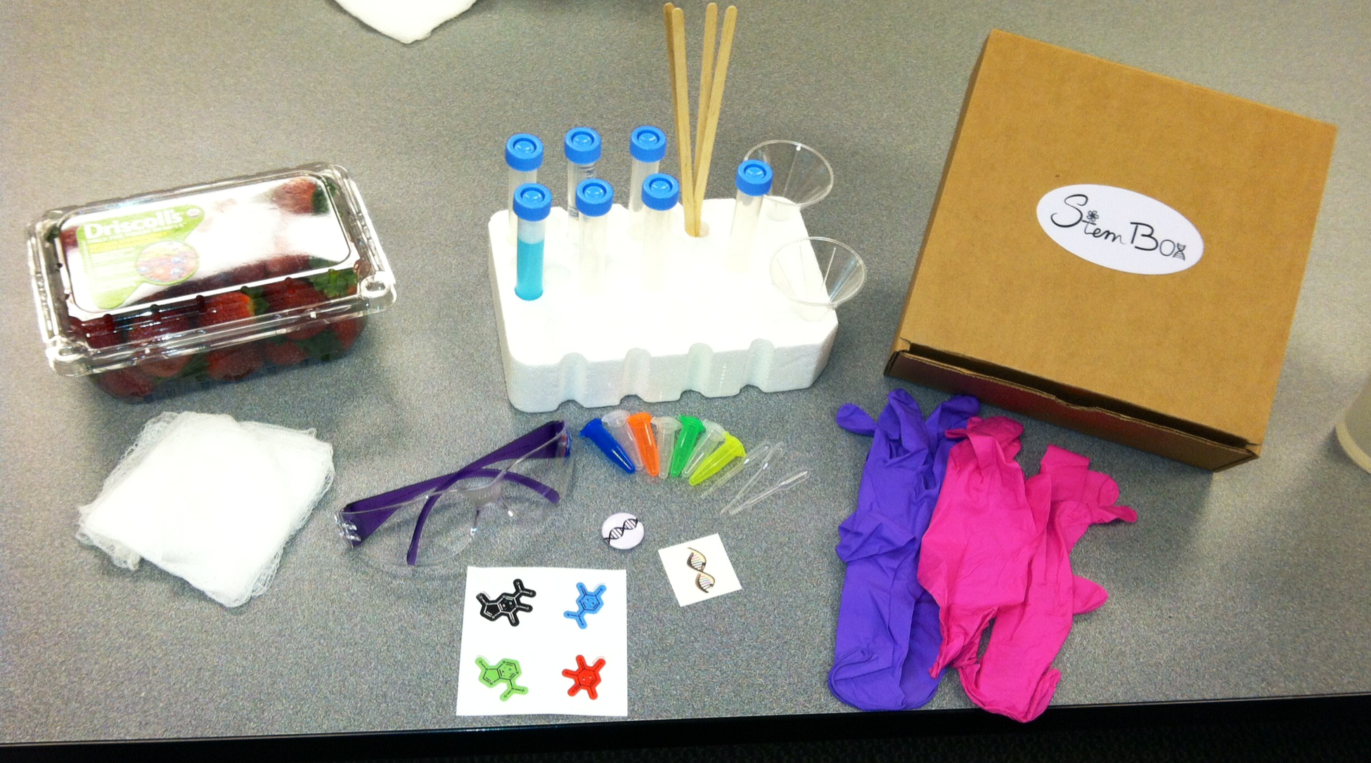 Strawberry DNA extraction box