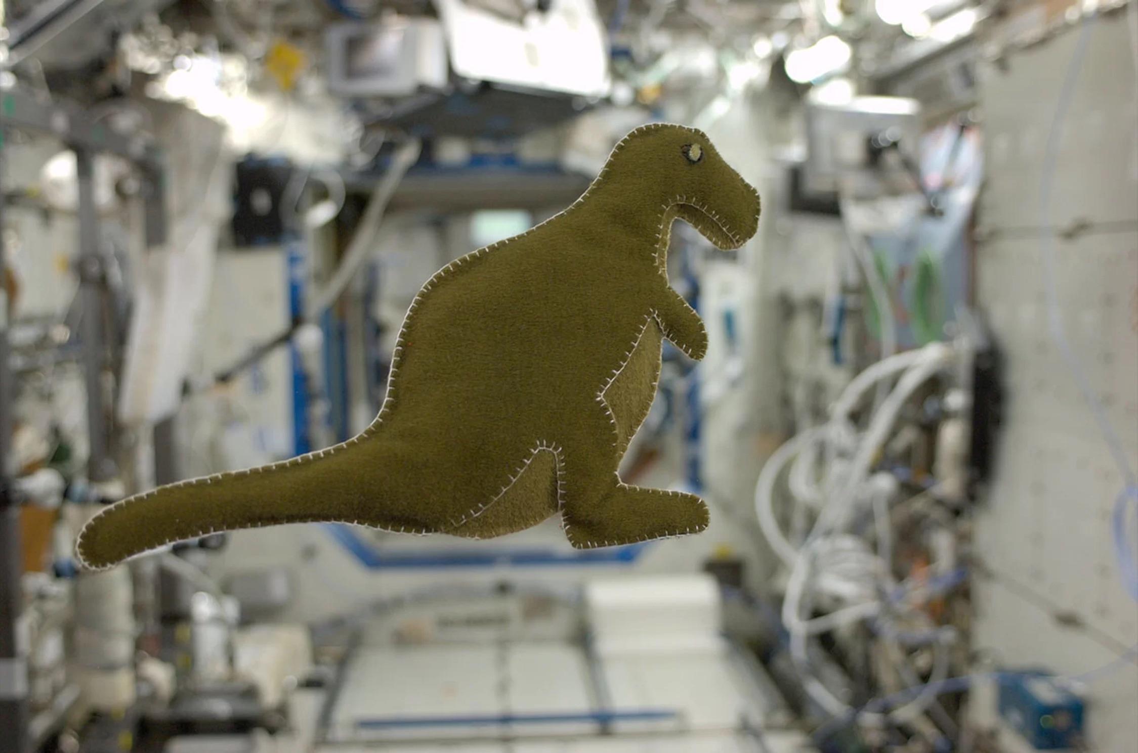 Karen Nyberg's fantastic stuffed dinosaur