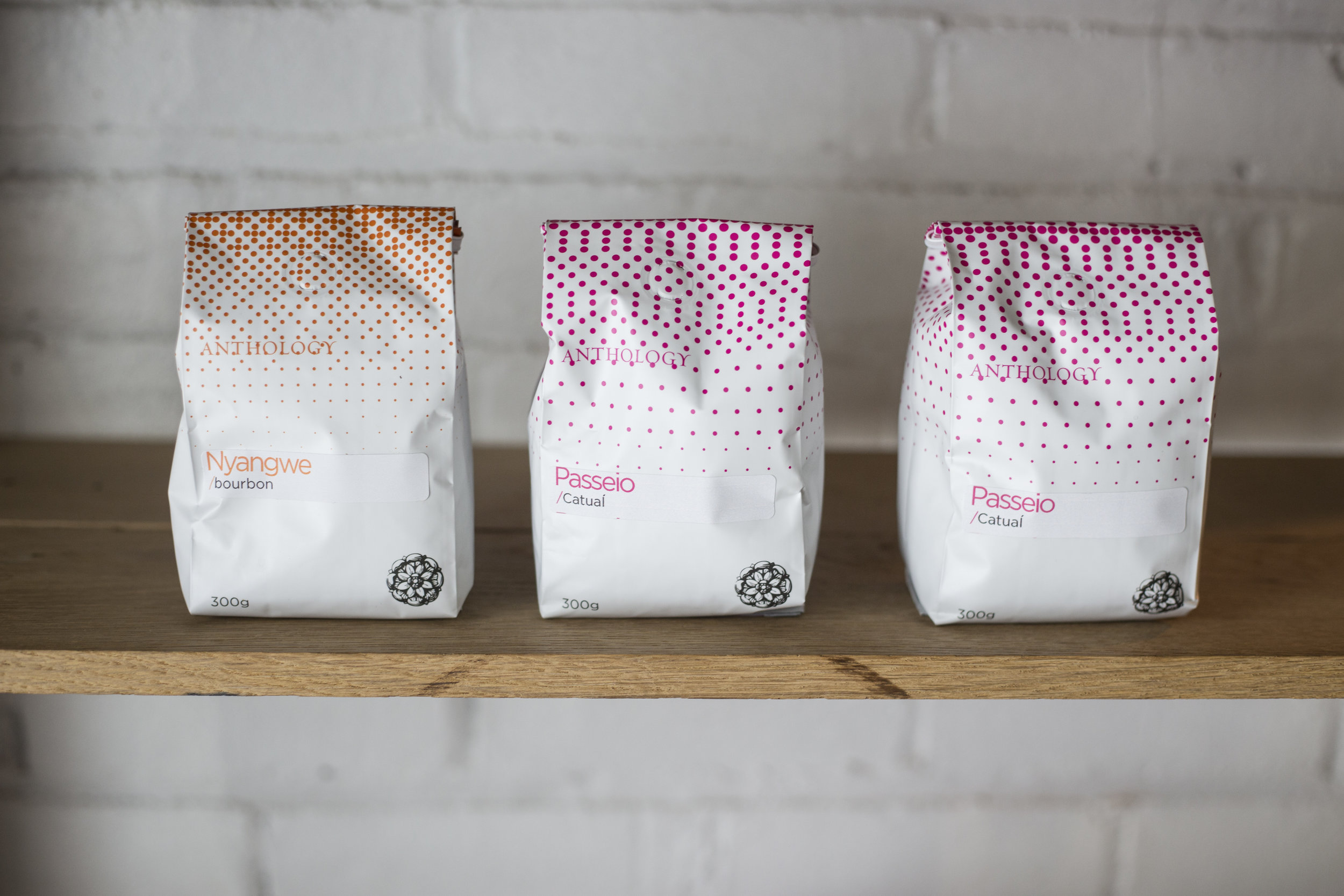 Anthology Coffee finds its home in Ponyride Detroit, a collaborative space to encourage small-businesses to work together to create a stronger city.
