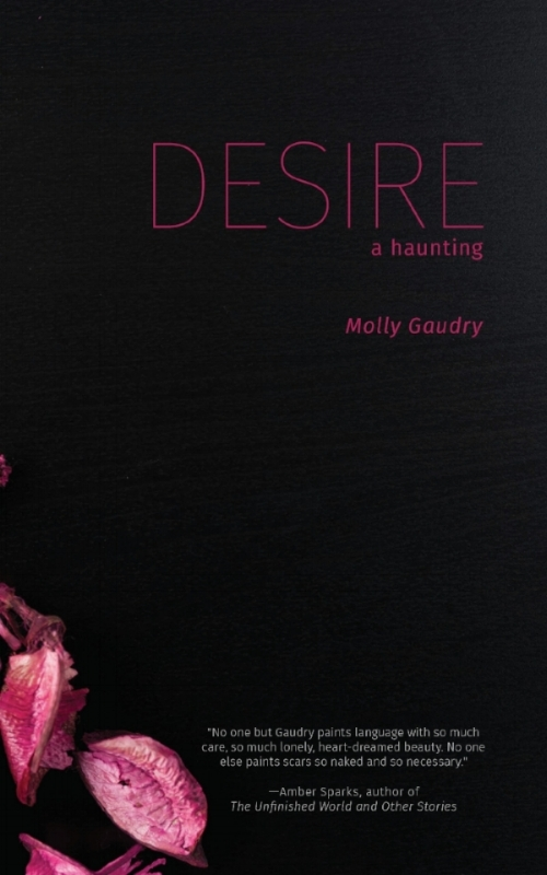 """Traumatized by the events ofWe Take Me Apart… - the unlikely heroine of Desire: A Haunting leads a silent life in the cottage that has been in her family since Hester Prynne first bequeathed it to Pearl — whose endearingly cranky spirit remains. So begins this strange friendship between """"dog"""" and a ghost calling herself """"Ogie."""