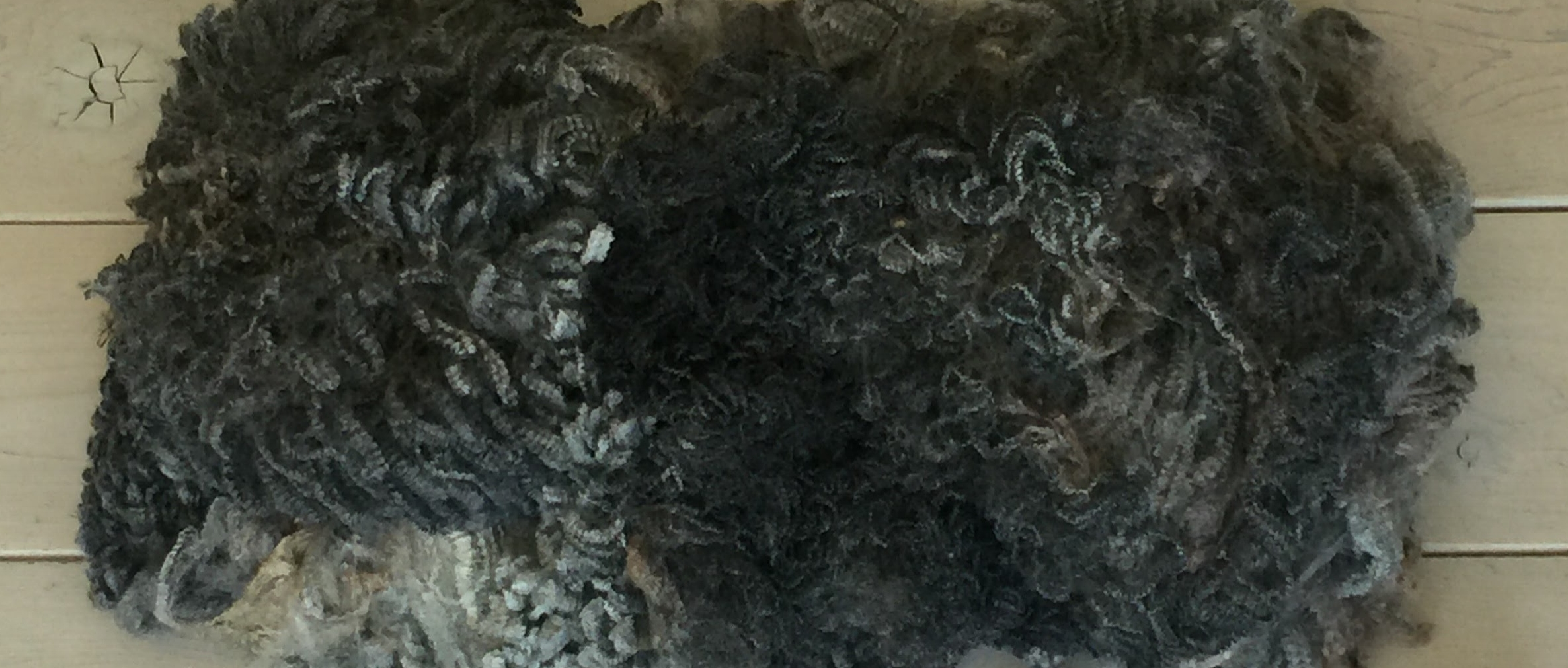 Raw Fleece - Coated, Heavily Skirted, Exceptionally Clean