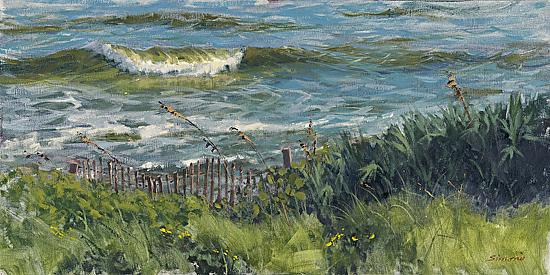 high-tide-@-area-5.jpg