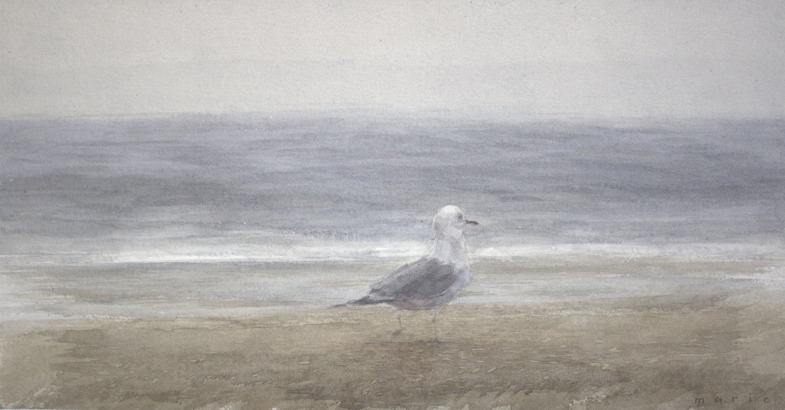 Robinson_Point Pleasant Seagull_watercolor_10 x 20 $1200.jpeg