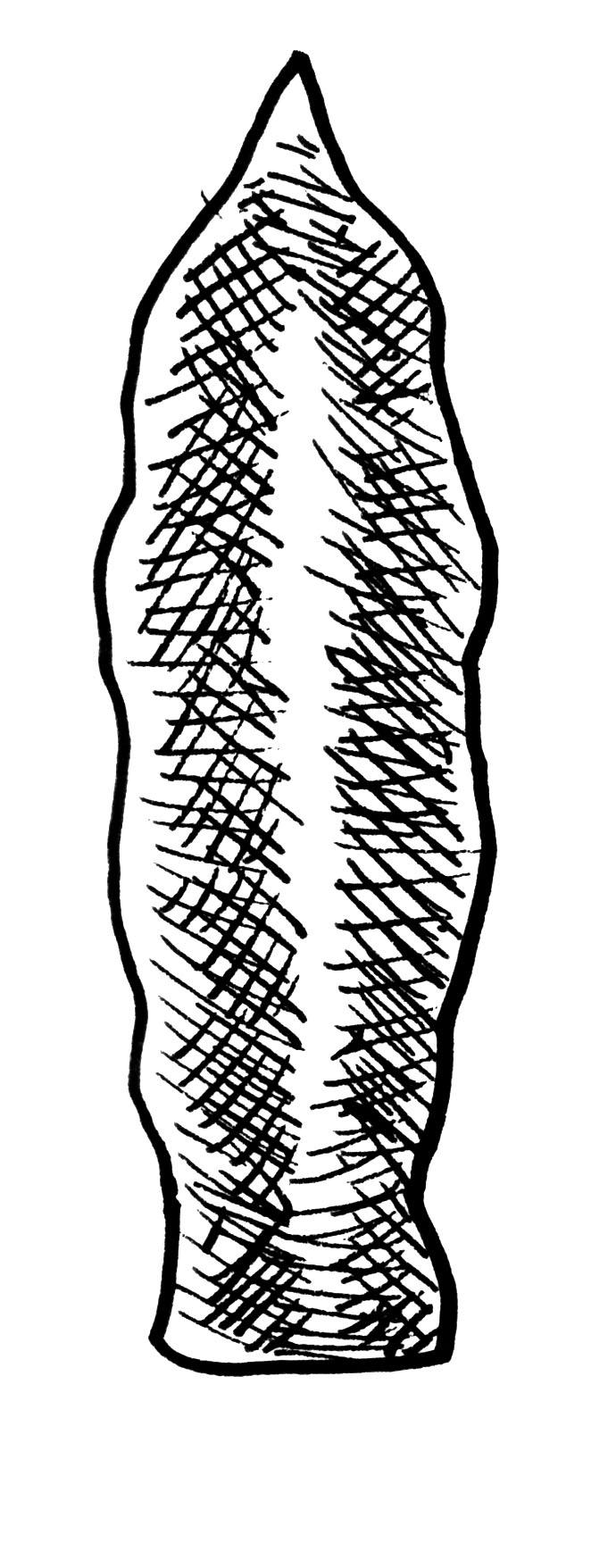 arrowheads 2.jpg