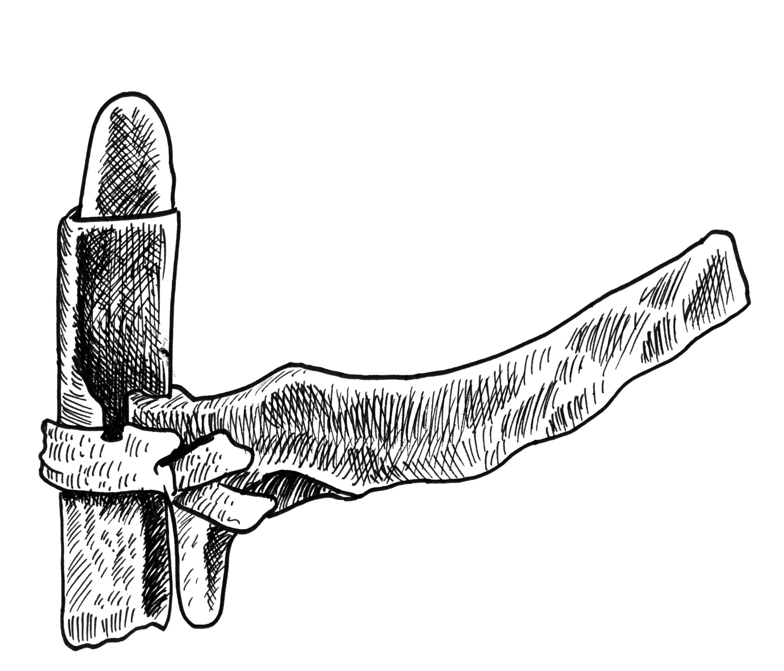 arrowheads.jpg