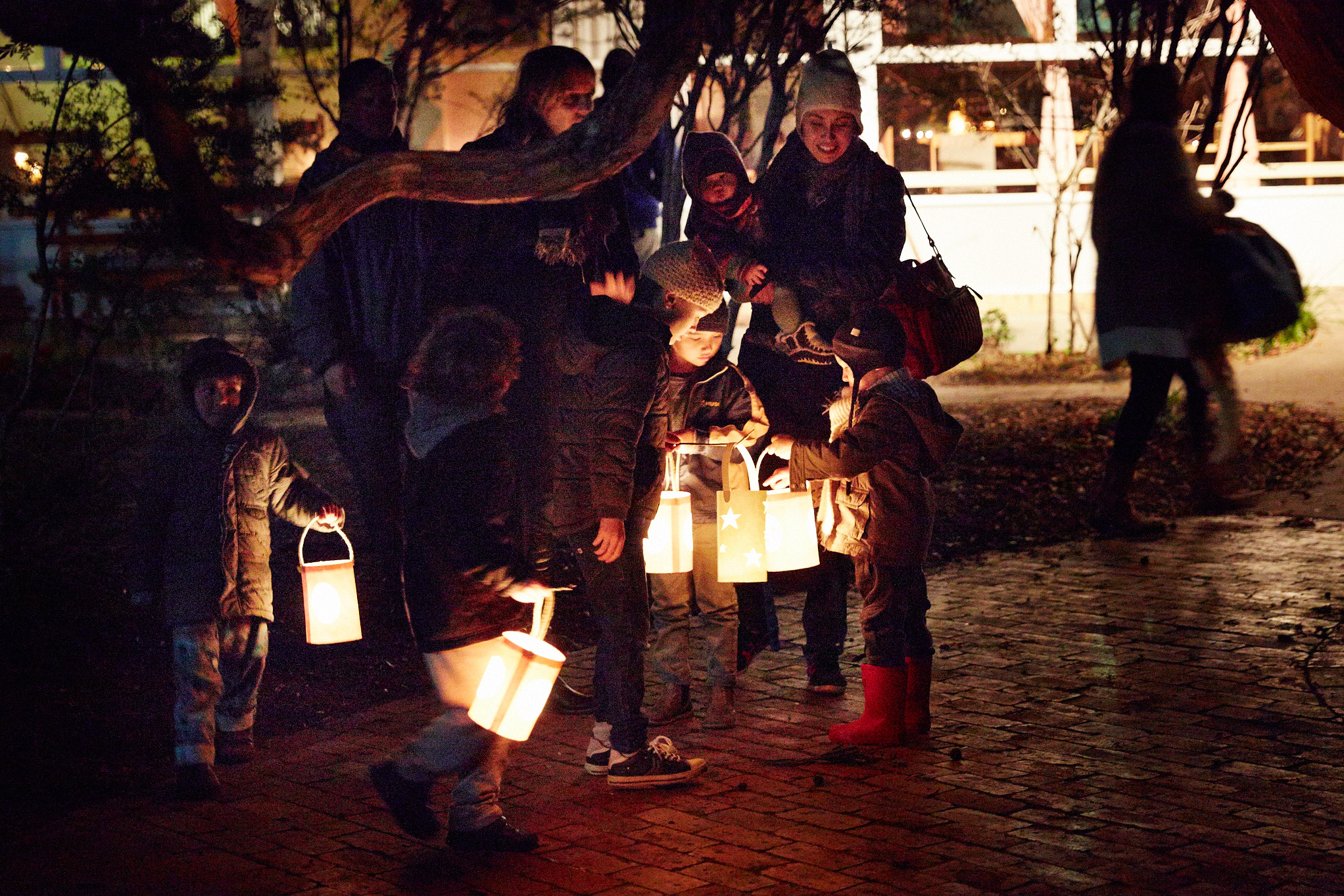 Steiner_Lanterns_139.jpg