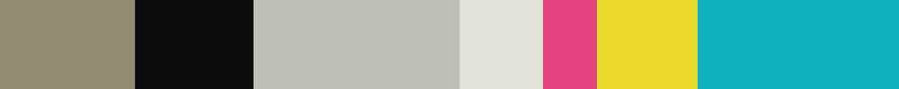 voorbeeld kleurpalet.jpg
